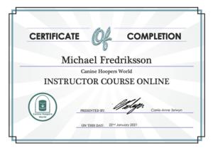 Certificate CHWI online