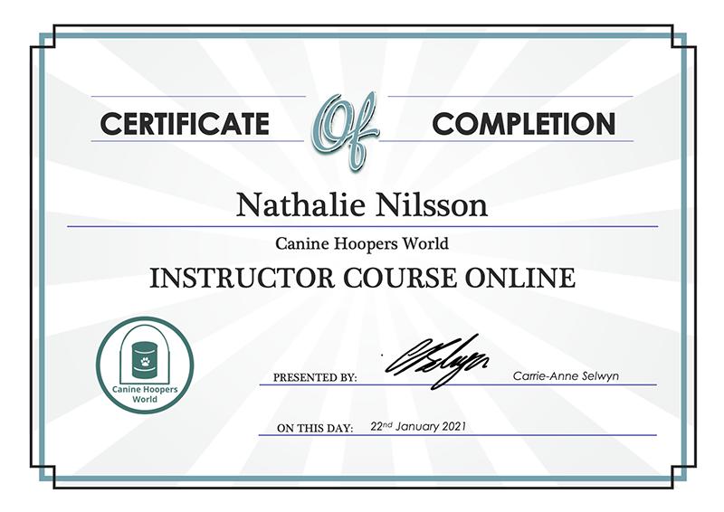 Certificate CHWI online_nathalie