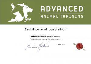 Certificate of completion Nathalie N